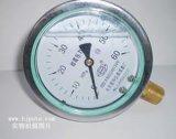 YTN耐震压力表(充油型)
