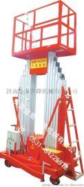 供应秦皇岛铝合金升降机&SJYL14米300公斤供应商金泰济南升降有限公司