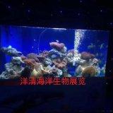 广州超白玻璃鱼缸订做厂家