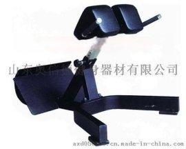 奥信德AXD-5045健身房商用罗马椅训练器