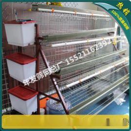 厂家现货三层蛋鸡笼子 出口非洲的镀锌鸡笼价格 耐热不易生锈
