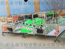 安徽阜阳母猪产床复合漏粪板塑料漏粪板养猪设备
