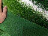 人造草坪厂家排名咨询丨博纳丨专业的生产技术