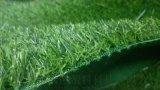 专供丨北京人造草坪厂家丨足球场幼儿园专用草坪