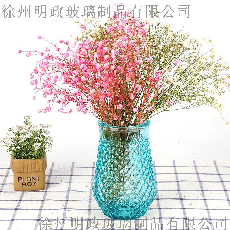 美式乡村大号透明玻璃花瓶花开富贵竹水培装饰花器客厅插花摆饰