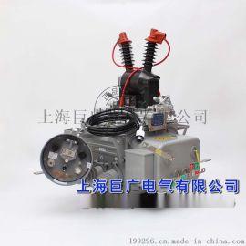 ZW20-12户外高压真空分界开关巨广电气