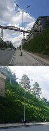 湖南市政路灯厂家湘西州龙山县岳麓大道10米组合灯