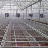 长期供应优质花架网电焊网苗床@汉明