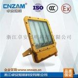 ZBD153 LED防爆投光灯 (RLEEXL5330180W-240W)