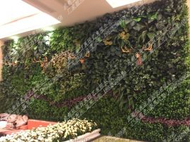 永川仿真植物墙生产 荣昌铜梁合川假植物墙生产 万州仿真绿植墙生产 石柱假植物