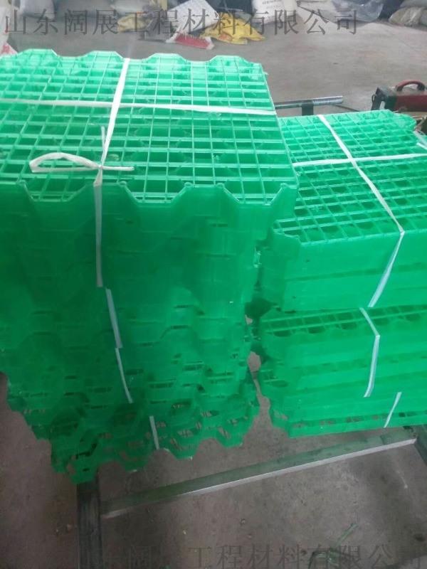 萊蕪高抗壓加強型植草格/廠家定製銷售