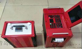 携带方便LB-3010非分散红外烟气分析仪