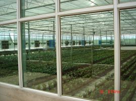 十堰连栋玻璃温室 郧县阳光板温室建造-河南歌珊温室公司