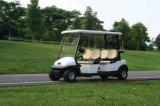 朗動校園內專用觀光車