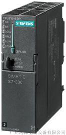 S7-300数字量输入模块