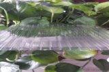 潍坊阳光板,潍坊温室阳光板,潍坊阳光板的价格和地址