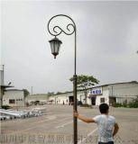 多樣式旅遊景區復古庭院燈_熱鍍鋅庭院燈廠家