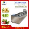 水果蔬菜氣泡清洗機,臭氧清洗機廠家直銷