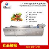 蔬菜苹果橘子臭氧消毒清洗机洗果机TS-X400