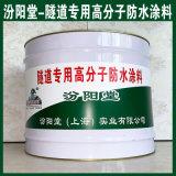 生产、隧道专用高分子防水涂料、厂家