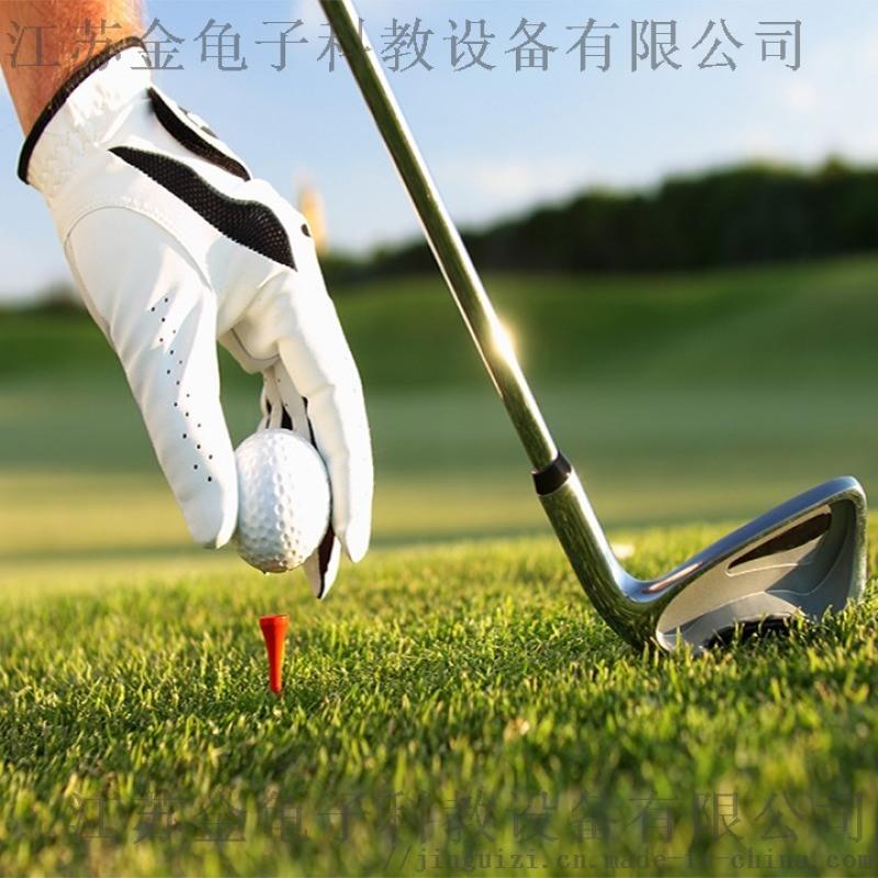 高尔夫球场果岭人造草坪