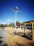 太陽能路燈6米LED新農村庭院燈高杆燈特色超亮