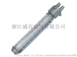 DGS36/127L矿用隔爆型LED巷道灯