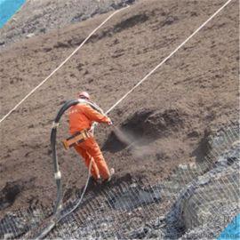 防护用勾花网A新余防护用勾花网A防护用勾花网厂家