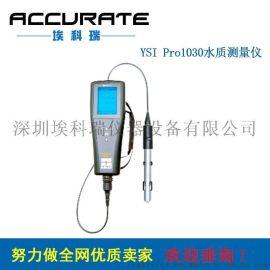 美国YSI ProPlus手持式多参数溶氧仪