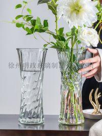 玻璃花瓶富贵竹瓶百合花瓶客厅插花瓶客厅摆件