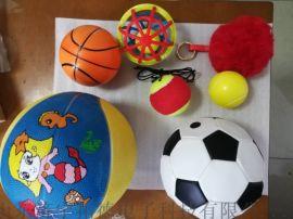 0-6岁儿童智能发育筛查测验DST软件工具箱