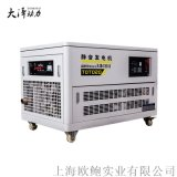 大泽动力15kw静音汽油发电机TOTO15