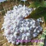 鹅卵石厂家供应 白色水磨石石子 白色机制鹅卵石