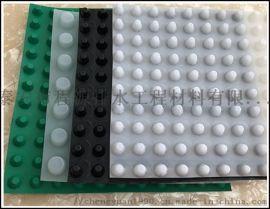 天津透水型塑料凹凸(排)透水板用户注意了是批发