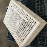 装鸡运输笼子 拼装塑料大鸡笼子 塑料大鸡笼子图片