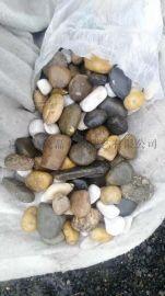 商洛黑色鹅卵石厂家、商洛白色鹅卵石雨花石销售公司
