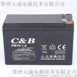 12V7AH卷闸门 消防监控 儿童车音响喷雾器电池