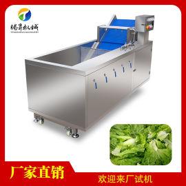 水果清洗机 气泡臭氧果蔬洗菜机