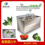TS-B商用双缸洗菜机