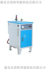 贝思特全自动3KW蒸汽发生器 服装整烫蒸汽炉
