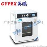 广州高精密真空干燥箱YPHX-91TP