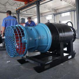专业生产雪橇式轴流泵