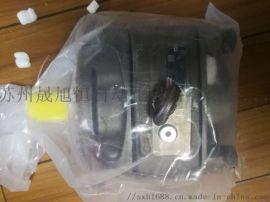 PGH5-3X/063RE11VU2力士乐齿轮泵