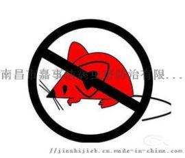南昌灭鼠公司,家庭灭老鼠,南昌捕鼠公司