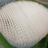 海水脫 250Y塑料孔板波紋填料PP雪花環填料