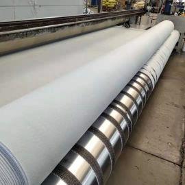 四川FN2型復合土工膜, 600克兩布一膜