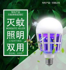 滅蚊照明兩用LED燈趕集廟會地攤江湖產品25元模式貨源