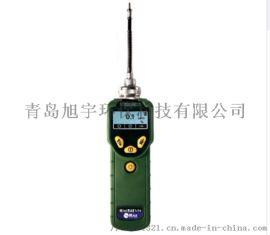 美国华瑞PGM-7300VOC检测仪