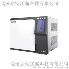 液化气中二**检测 泰特仪器 专业气相色谱仪GC2020N