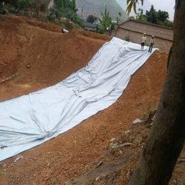 天津防水土工布, 250克二布一膜